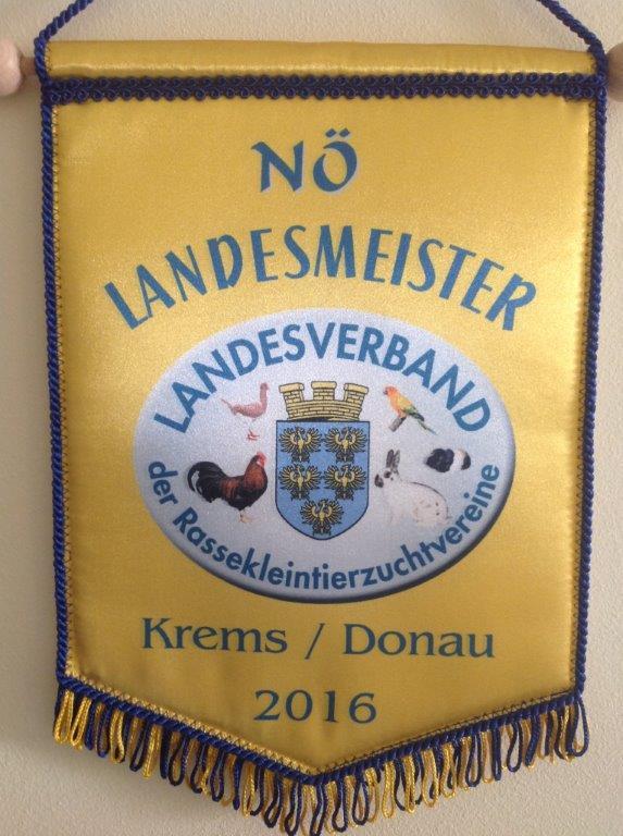2xNÖ Landesmeister/Krems  2016                  1x mit King braun 1x  mit King braunfahl
