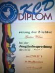 Diplom JTB Bez.I 2011