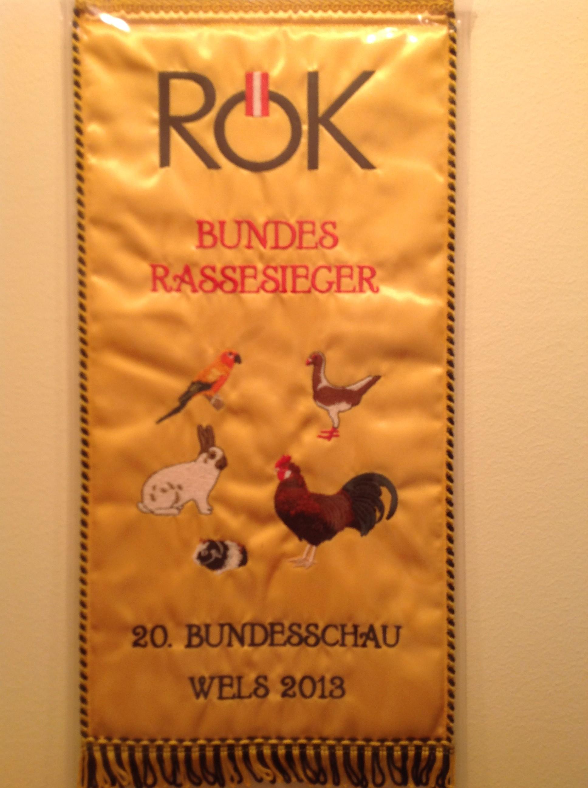 Bundesrassesieger Bundesschau Wels 2013 King braun