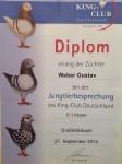 JTB KCD 2014 Großköllnbach HV Diplom auf 0.1 Braun