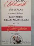 Bundesschau Ried 2015              Champion 0.1 King braunfahl
