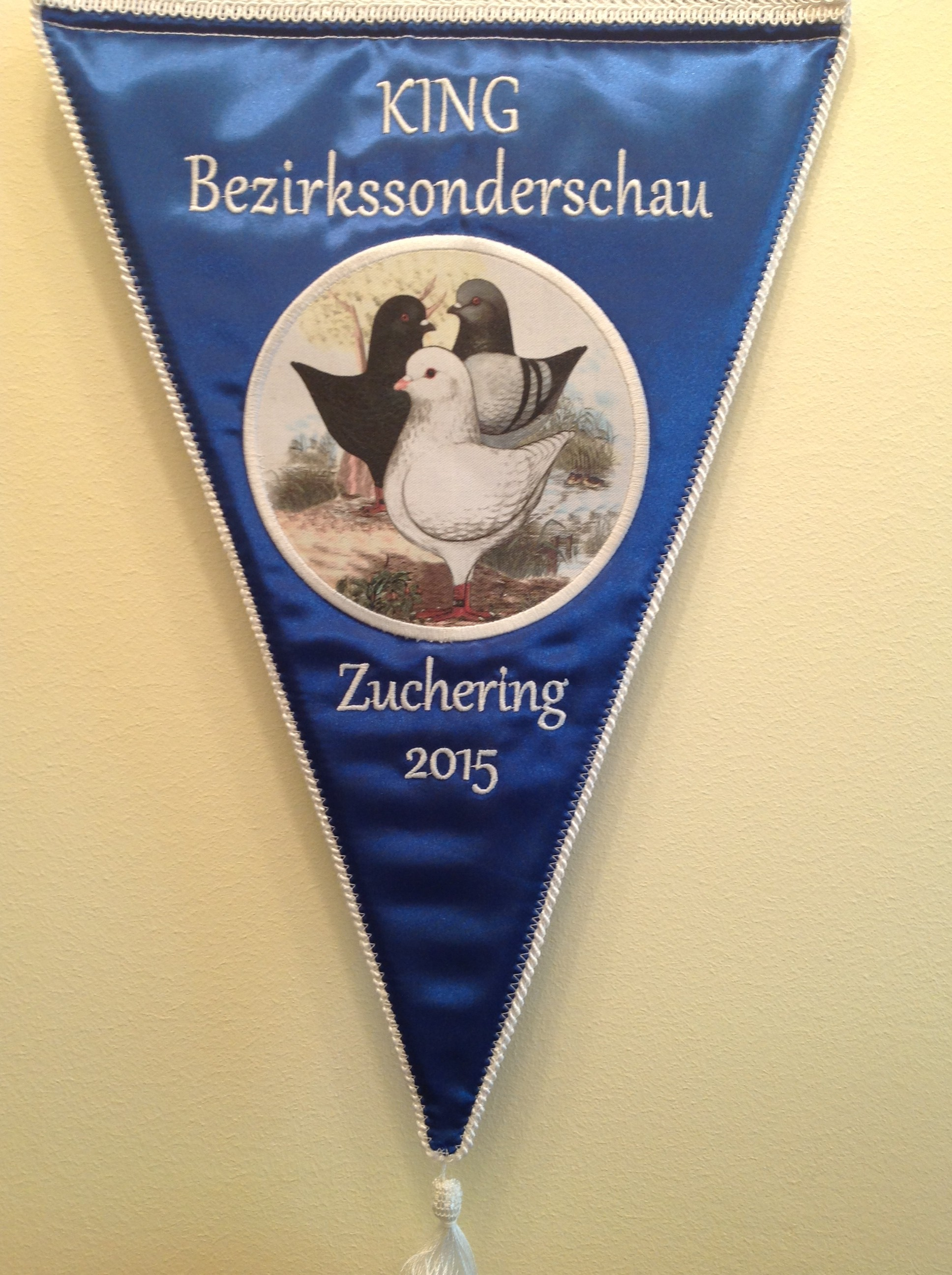 BSS Bez.1 2015 in Zuchering V-Kingwimpel 0.1 Braunfahl