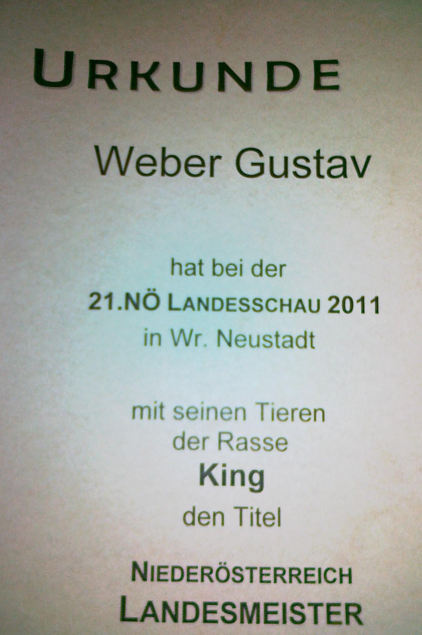 Nö Landesmeister 2011