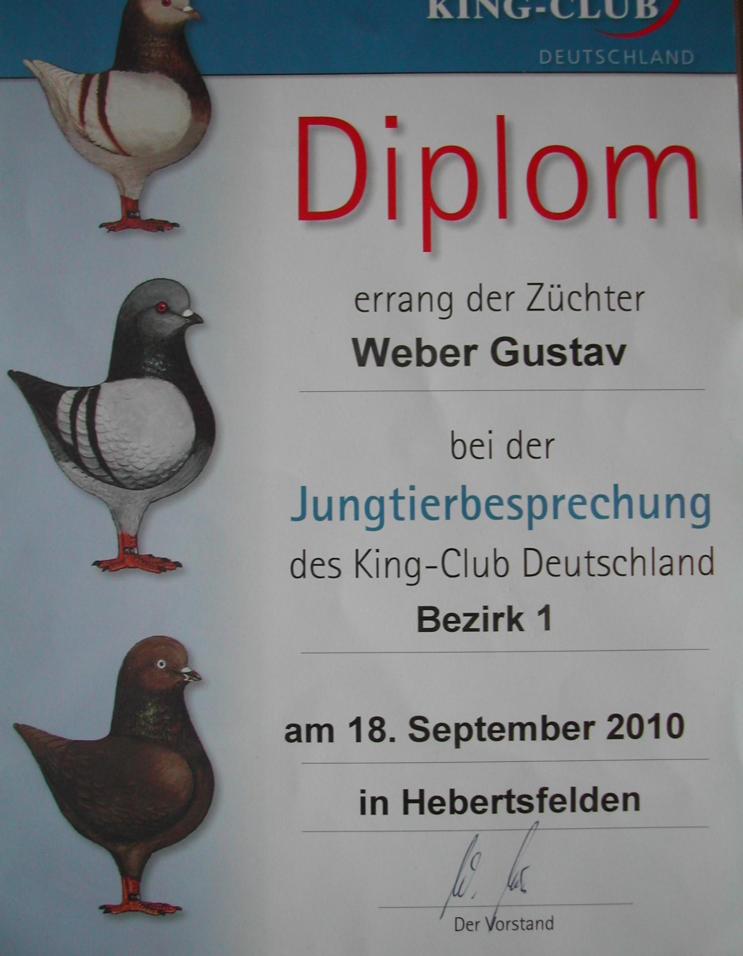 Diplom 1.0 Braun JTB Bez.I 2010