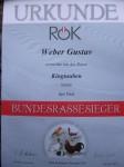Bundesjungtierschau/Ried 2013    Rassesieger 0,1 Braun
