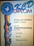 Diplom 2012 , HV 96 , 1,0 Braunfahl