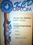 Diplom 2012 , HV 96 , 0.1 Braun