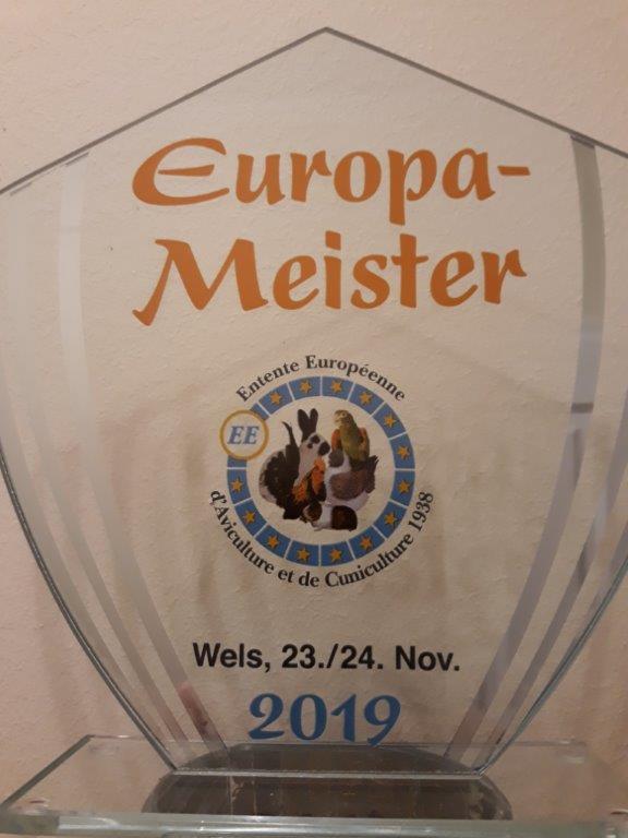 RBE Wels 2019, Europameister mit King braun , 383 Punkte