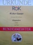 Bundesmeister/ Ried 2013 King Braun