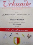Landesschau/Ried 2013  King Braun