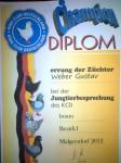 Champion Diplom 2012 , HV 96 , 0.1 Braun